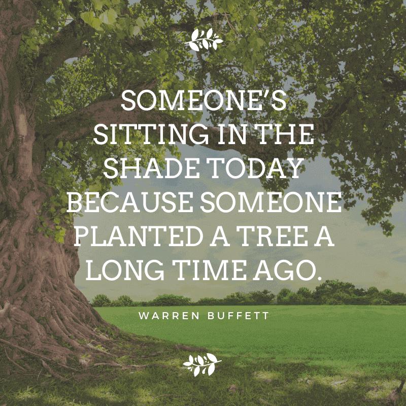 money quotes from warren buffett