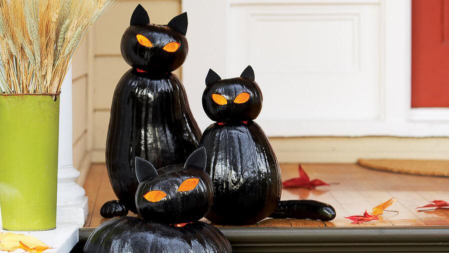 diy halloween decorations - black cat o lanterns