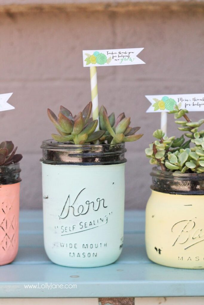 diy-mason-jar-succulent-pots-christmas-gift
